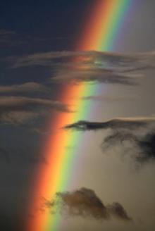 როგორ დავიმახსოვროთ ცისარტყელას ფერები მარტივად.