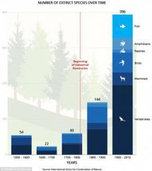 კაცობრიობა 100 წელზე მეტ ხანს ვერ იარსებებს