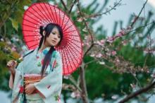 წარმოუდგენელი ფაქტები იაპონიაზე