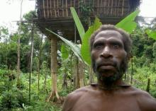 კოროვაი-ტომი, რომელიც ჯერ კიდევ ხეებზე ცხოვრობს: მოგზაურობა შორეულ პაპუა-ახალ გვინეაში