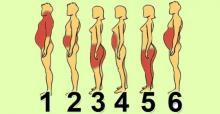გაიგეთ სხეულის ფორმების მიხედვით თუ რა გასუქებთ და დაემშვიდობეთ მკაცრ დიეტას