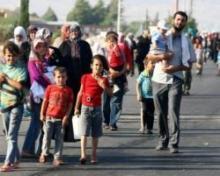 ევროპარლამენტის დეპუტატი - საქართველომ შესაძლოა, სირიელი მიგრანტები მიიღოს