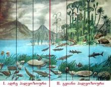 § 8. პალეოზოური ერა. თავი II - დედამიწის ასაკი და განვითარების ისტორია. ზოგადი გეოგრაფია. დამხმარე სახელმძღვანელო აბიტურიენტებისთვის