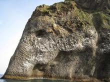 """""""სპილოს  კლდე""""  - ბუნებრივი და თანაც საოცრად არაბუნებრივი კლდის  ნაგლეჯი ისლანდიაში"""
