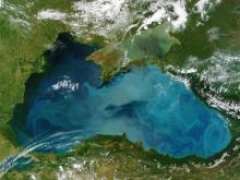 10 ფაქტი შავი ზღვის შესახებ. რატომ ჰქვია შავ ზღვას შავი