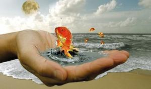 «ოქროს წუთი» – დრო, სურვილების ჩასათქმელად (თან, ყოველ დღე)
