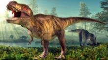 რა იცით დინოზავრების შესახებ? - 7 უცნაური ფაქტი, რომელიც აუცილებლად უნდა იცოდეთ!