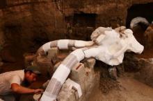 14 000 წლიანი მამონტის ნამარხი მექსიკაში აღმოაჩინეს!
