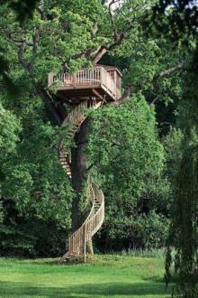 ხეზე აშენებული მდიდრული სახლები, ეს უნდა ნახოთ