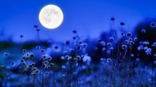 მონატრება და მთვარე