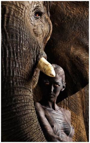 ადამიანები და ცხოველები: ცნობილი ფოტოხელოვანის უნიკალური ფოტო-სერია – როდესაც ყველა ზღვარი იშლება...