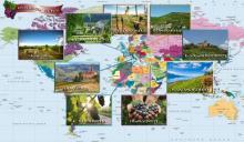 ღვინის გზა.  მსოფლიოს ყველაზე ცნობილი ღვინის მწარმოებელი რეგიონები
