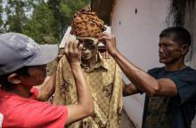 ინდონეზიური სოფლის ამაზრზენი ტრადიცია.სუსტი გულის მქონეებმა არ ნახოთ ( იხილეთ +18 ფოტოები)