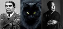 ბრეჟნევის მისანი კატა, საჩუქარი დალაი-ლამასგან