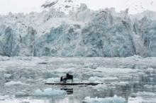 მუსიკოსი, რომელმაც პიანინო ყინულზე დაუკრა