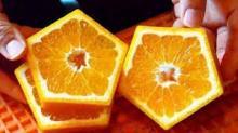 იაპონელი ფერმერების საოცარი ექსპერიმენტები