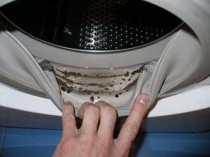 სარეცხის მანქანა სოკოვან დაავადებებს იწვევს! როგორ გავწმინდოთ ის?