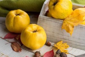 კომში - ხილი, რომელსაც საოცარი თვისებები აქვს - ეს აუცილებლად გაითვალისწინეთ!