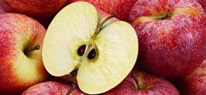 """შეიძლება თუ არა ვაშლის """"კურკის"""" ჭამა, მომაკვდინებელი საფრთხე თუ სამკურნალო საშუალება?"""