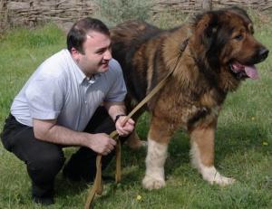 """""""ძაღლი ჩემია ბიჭო..ჩასვი ახლავე, თორემ გაგიხვრიტავ შუბლსო"""" - პატრიარქის ძაღლის ისტორია"""