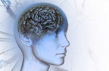 მეცნიერთა რეკომენდირებით! სასარგებლო რჩევები თავის ტვინისთვის