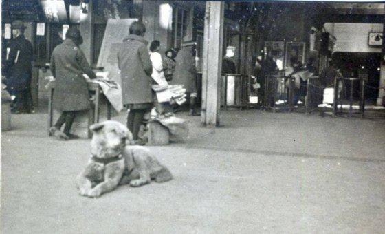ნამდვილი ჰაჩიკოს ფოტო გადაღებული 1934წელს