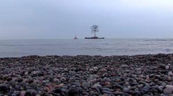 ივანიშვილის ხე ზღვაში