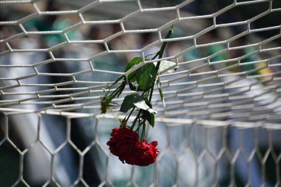 ავიაკატასტროფის მსხვერპლი ფეხბურთელის შეყვარებულის მიერ დატოვებული ყვავილი!