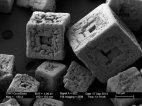 მიკროსკოპით დანახული მარილი