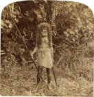 უკანასკნელი კანიბალი ტომი ფიჯის კუნძულზე-1905 წელი
