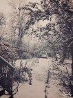 ლეჩხუმში ზამთარი დგება!!!