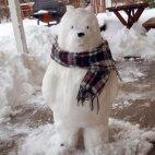 გამარჯობა-მე თოვლის ბაბუას მეგობარი ვარ