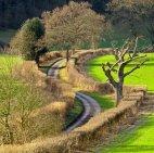 სოფლის გზა,ოქსფორდშაირი,დიდი ბრიტანეთი