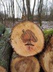 """""""გარდაცვლილი ხის საფლავის ქვა"""""""
