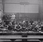 ანტვერპენის ზოოპარკში დატყვევებული გერმანელები.ბელგია, 1955 წლის 5 სექტემბერი.