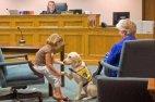 ძაღლი, რომელიც სასამართლოში ეხმარება ბავშვებს სტრესის მოხსნაში, რათა ბავშვები არ აღელდნენ და სიმართლ