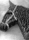ეძღვნება 8 მილიონ ცხენს, რომელიც პირველ მსოფლიო ომს შეეწირა.