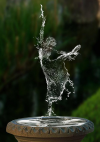 წყლის სული