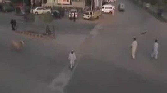 ავარია  უმანქანოდ-ვიდეო, რომელმაც მსოფლიო მოიარა