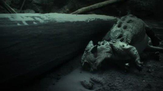 როგორ გადაშენდნენ დინოზავრები