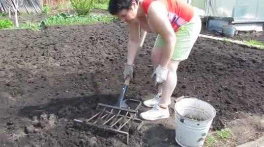 საოცარი გამოგონება მიწის, სწრაფად და მარტივად დასამუშავებლად