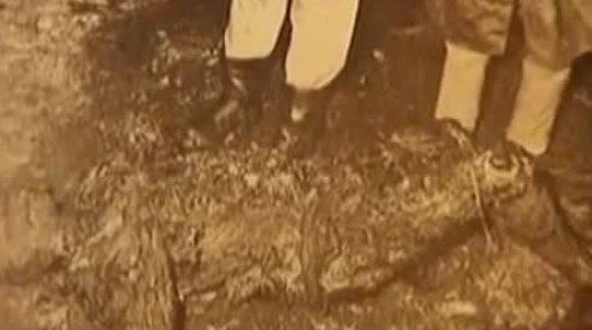 ავიაკატასტროფა ტენერიფზე (27.03.1977)