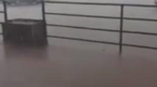 წყალმა წაიღო ლილო - სოცქსელში ვიდეო გავრცელდა