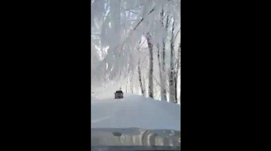 ზამთრის ულამაზესი კადრები ცხვარიჭამიიდან-ვიდეო ,რომელმაც ინტერნეტი დაიპყრო