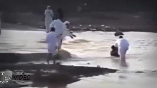 ვიდეო, რომელმაც მსოფლიო აატირა